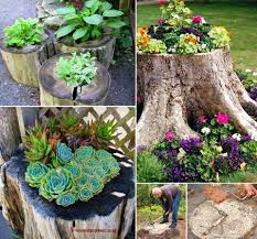 Buy A Planter How To Create A Tree Stump Planter Tree Stump Fairy Doors And