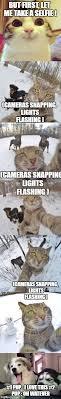 Meme Generator Doge - doge meme generator imgflip my memes pinterest doge meme