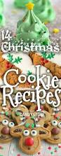 14 fun christmas cookies u0026 desserts candystore com