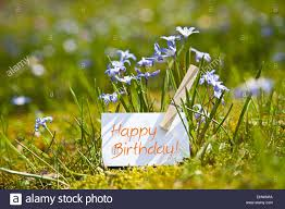 happy birthday with spring flowers stock photo royalty free