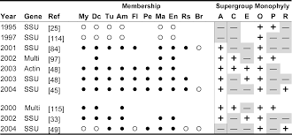 evaluating support for the current classification of eukaryotic