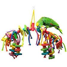 amazon bonka bird toys 1839 foraging star bird toy parrot