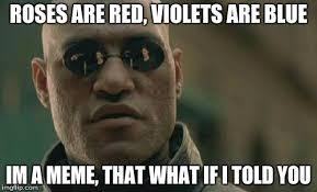 Roses Are Red Violets Are Blue Meme - matrix morpheus meme imgflip
