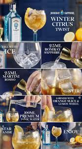 martini dratini best 25 bombay sapphire ideas on pinterest gin tonic recipe