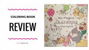 the magical guinea pig colouring book review youtube