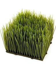 artificial ornamental wheatgrass plastic wheat grass