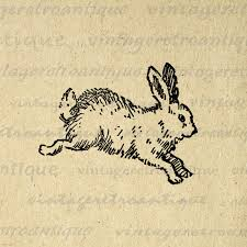 vintage rabbit bunny printable image digital rabbit illustration