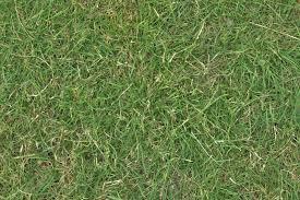 grass turf lawn green ground field texture ver 1 gimp textures