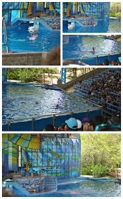 Sea World San Antonio Map by Summer Travels Seaworld San Antonio Mommymandy L Texas Mom Blog