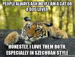 Funny Tiger Memes - cats or dogs i has a hotdog dog pictures funny pictures of