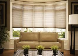 Pleated Shades For Windows Decor Pleated Shades Blinds Budget Blinds