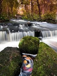 Rhode Island Waterfalls images Stepping stone falls west greenwich rhode island ri usa at jpg