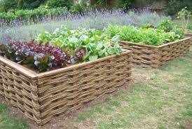 Vegetable Beds Raised Vegetable Beds Using Willow Hurdles Special Projects
