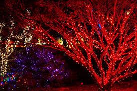 enjoying meadowlark gardens winter walk of lights