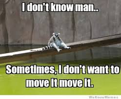 Lemur Meme - depressed lemur weknowmemes
