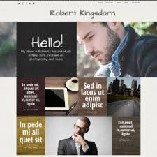 parallax wordpress personal pages themes