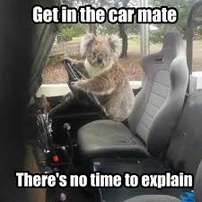 No Time To Explain Meme - i can has cheezburger no time to explain funny animals online