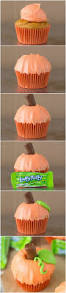 pumpkin patch cupcakes your cup of cake