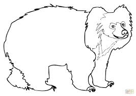 coloring pages cute teddy bear coloring pages teddy bear