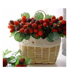 compare prices on artificial strawberry plants online shopping