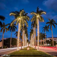 palm tree christmas christmas lights decoration