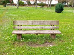 wooden park bench in nature a good place to sit stock photo