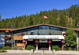 jasper hotels book jasper hotels in jasper national park lobstick lodge from c 109 jasper hotels kayak