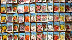 cheap seed packets amsterdam cheap souvenirs flower markets seeds and bulbs