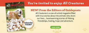 shopguideposts org shop guideposts for inspirational books