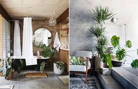 home interior plants outside in how garden retreats influence home interiors garden