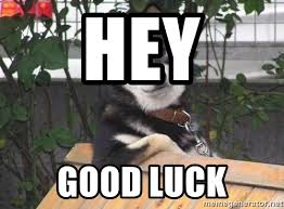 Cool Dog Meme - hey good luck cool dog meme generator