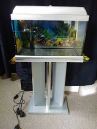 Aquarium For Home by Fish Tank Enchanting Amazing Fish Tanks For Sale Uk Home Appealing