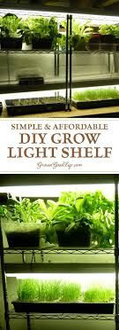 lights to grow herbs indoors build a grow light system for starting seeds indoors growing