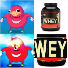 Protein Powder Meme - dopl3r com memes on gold standard whey nney proten isolates