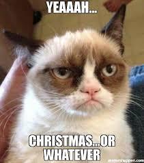 Whatever Memes - loser meme grumpy cat reverse 3467 page 8 memeshappen