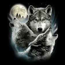 t shirt three wolf moon 3 wolves howling wolf
