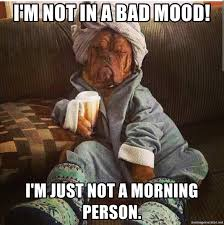 Not A Morning Person Meme - i m not in a bad mood i m just not a morning person saturday