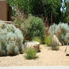 Landscaping Albuquerque Nm by Grass Roots Landscapes Get Quote Landscaping 4617 Crest Ave