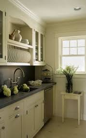 Kitchen Cabinet Plate Rack by Best 25 Contemporary Dish Racks Ideas Only On Pinterest Modern