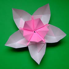 Lotus Blossom Origami - origami cherry blossom images craft decoration ideas