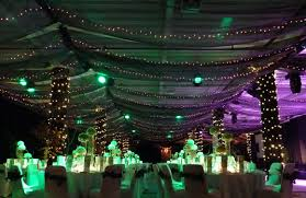 David Tutera Fairy Lights Ignore The Purple And Green Lights Black Organza With Fairy