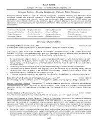 Recruitment Resume Cover Letter Diversity Recruiter Diversity Recruiter Resume Zip