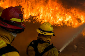 California Wildfires Pets by California Fires Some Firefighters Paid Minimum Wage Money
