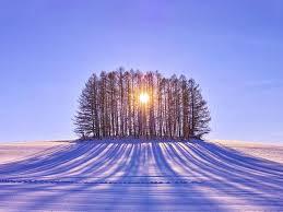three ways to celebrate winter solstice isthmus wisconsin