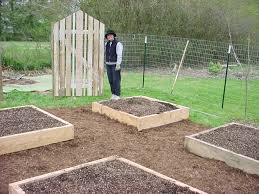 vegetable gardening styles