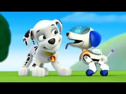 paw patrol academy game paw patrol cartoon nick jr english paw