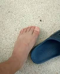 Toe Memes - the popular ugly toes gif streamerclips com