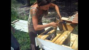 How To Build Top Bar Hive Top Bar Hive Split And Cross Comb Removal Tutorial Wmv Youtube