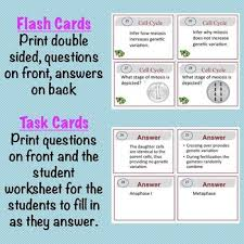 cell cycle task cards mitosis u0026 meiosis by brilliant biology tpt