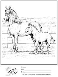 baby farm animal coloring page baby farm animal coloring pages
